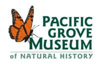 PG Museum logo